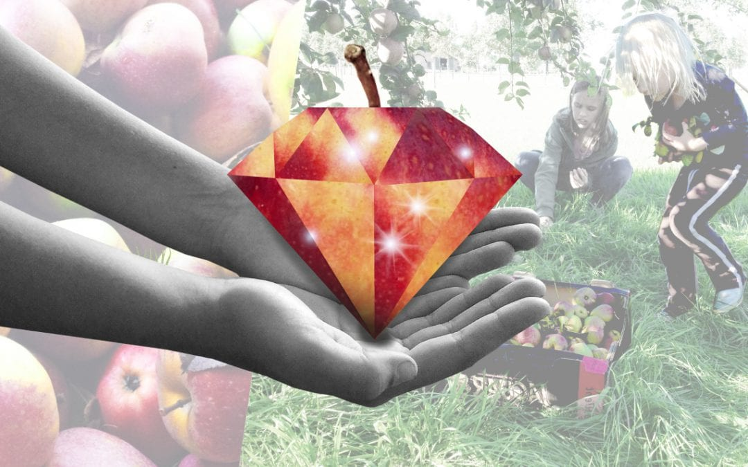 Hoe lokaal eten exotisch wordt