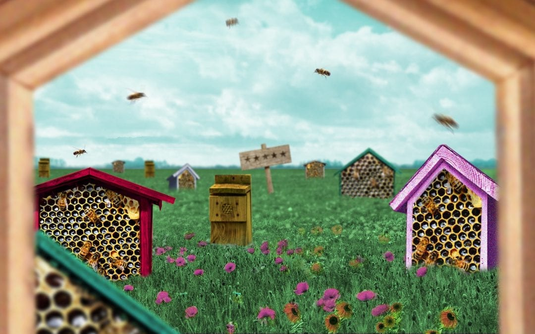 Geen mens zonder bijen
